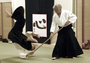 Maruyama sensei and Martijn van Hemmen